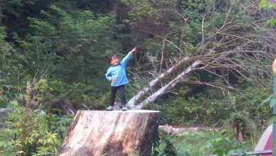 Casey camping log